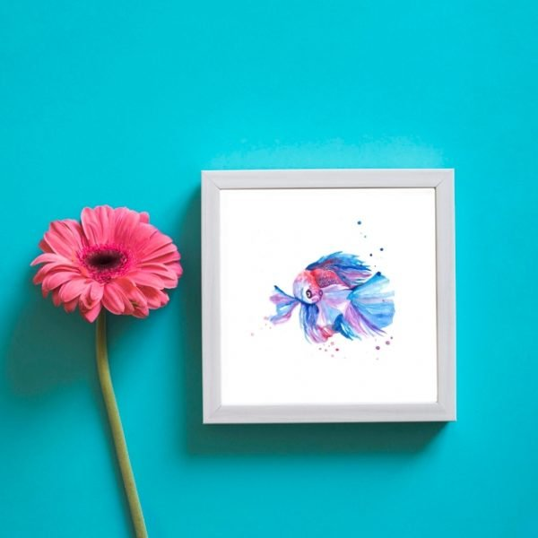 Betta Fish Wall Art